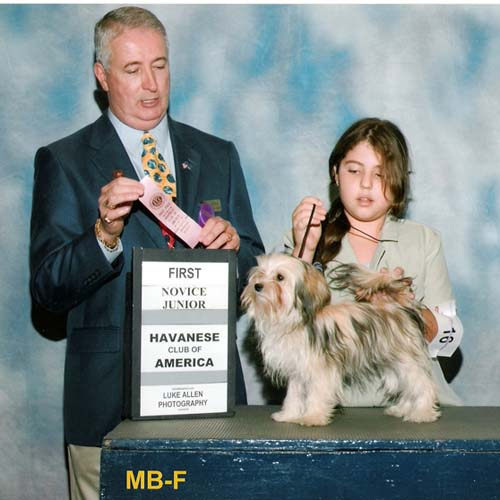Gabrielle with Havanese Gina at the Havanese Club of America Junior Handler show